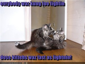 evrybody waz kung foo fightin  dose kittehs waz fast as lightnin!