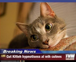 Breaking News - Cut Kitteh hypnotisess al wih cutnes