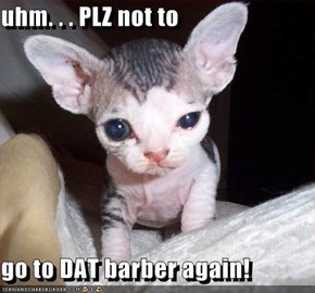 uhm. . . PLZ not to  go to DAT barber again!