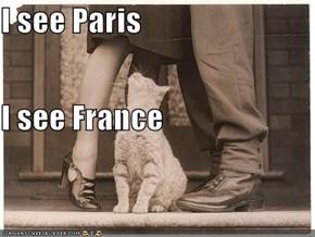 I see Paris I see France