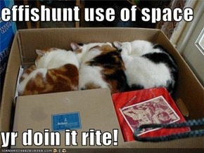effishunt use of space  yr doin it rite!