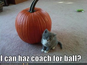I can haz coach for ball?
