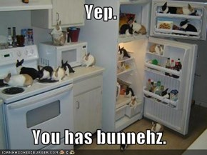 Yep.  You has bunnehz.