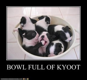 BOWL FULL OF KYOOT