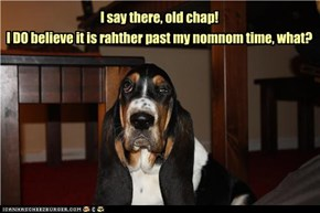 I DO believe it is rahther past my nomnom time, what?