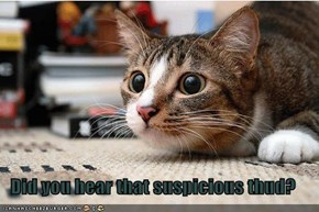 Did you hear that suspicious thud?