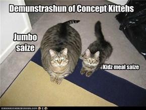 Demunstrashun of Concept Kittehs