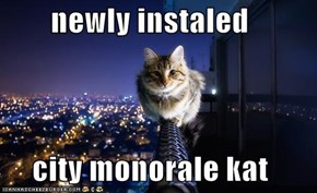 newly instaled       city monorale kat