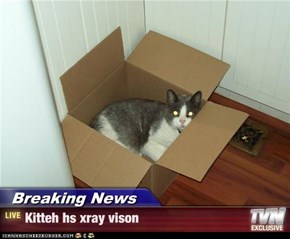 Breaking News - Kitteh hs xray vison