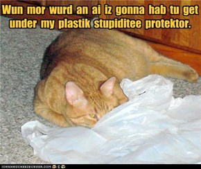 Wun  mor  wurd  an  ai  iz  gonna  hab  tu  get under  my  plastik  stupiditee  protektor.