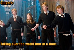 Gingers:  Taking over the world four at a time.