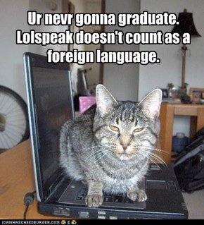 Ur nevr gonna graduate.  Lolspeak doesn't count as a foreign language.