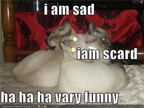 i am sad iam scard ha ha ha vary funny