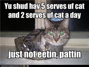 Yu shud hav 5 serves uf cat and 2 serves uf cat a day
