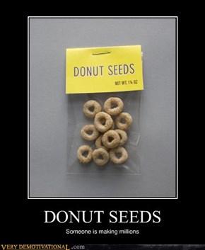 DONUT SEEDS