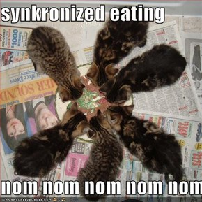 synkronized eating  nom nom nom nom nom nom