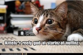 Kittehz  r  reely  gud  at  starinz at  nuffinz.