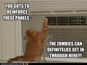 YOU GOTS TO REINFORCE THESE PANELS -