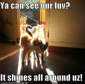 Ya can see our luv?  It shines all around uz!