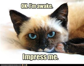 OK. I'm awake.