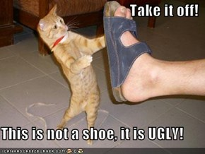 Take it off!  This is not a shoe, it is UGLY!