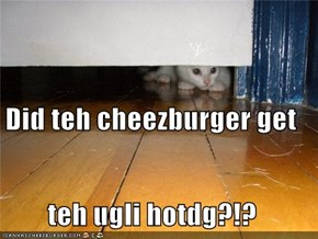 Did teh cheezburger get teh ugli hotdg?!?
