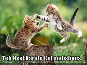 Teh Next Karate Kid audishuns