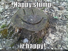 Happy stump  iz happy!