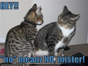 "HEY!!  ""no"" meanz NO, mister!"
