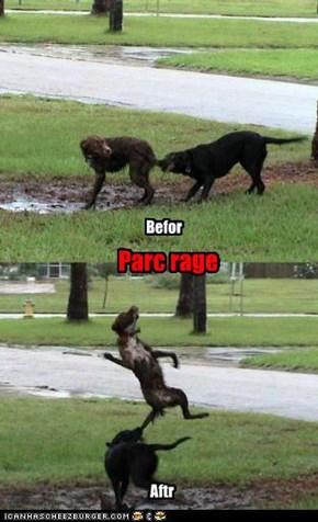 Parc rage
