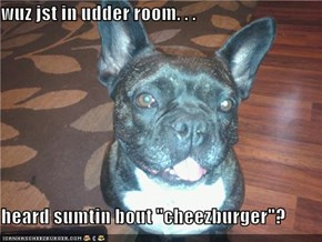 "wuz jst in udder room. . .  heard sumtin bout ""cheezburger""?"