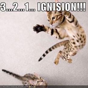 3...2...1... IGNISION!!!