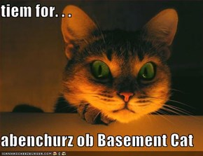 tiem for. . .  abenchurz ob Basement Cat