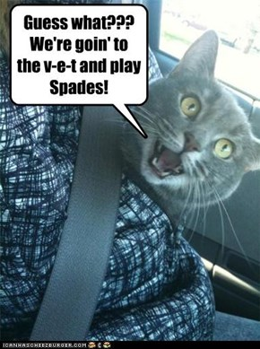 Guess what???  We're goin' to the v-e-t and play Spades!