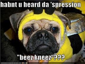 """habnt u heard da 'spression  """"beez kneez""""???"""