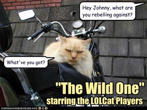 """The Wild One"" starring the LOLCat Players"