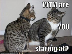 WTM are YOU staring at?