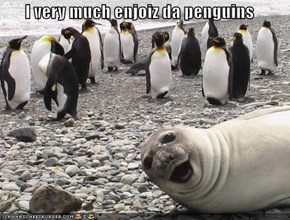 I very much enjoiz da penguins