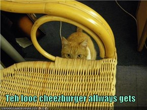 Teh looc cheezburger allways gets