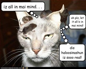 iz all in mai mind. . .