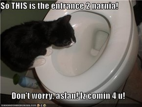 So THIS is the entrance 2 narnia!  Don't worry, aslan! Iz comin 4 u!