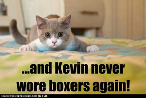 ...and Kevin never wore boxers again!