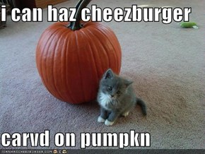 i can haz cheezburger  carvd on pumpkn