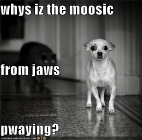whys iz the moosic  from jaws pwaying?