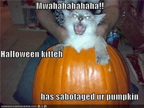 Mwahahahahaha!! Halloween kitteh has sabotaged ur pumpkin