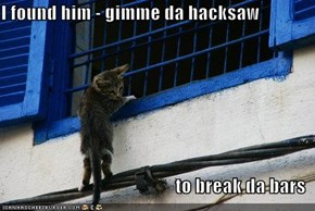 I found him - gimme da hacksaw   to break da bars
