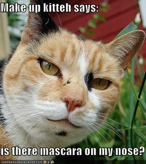 Make up kitteh says:  is there mascara on my nose?