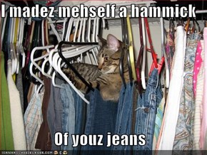 I madez mehself a hammick  Of youz jeans