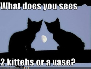 What does you sees  2 kittehs or a vase?
