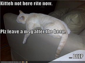Kitteh not here rite now. Plz leave a msg after the beep. ... BEEP